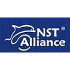 NST-Alliance Днепр, Киев, Запорожье, Харьков